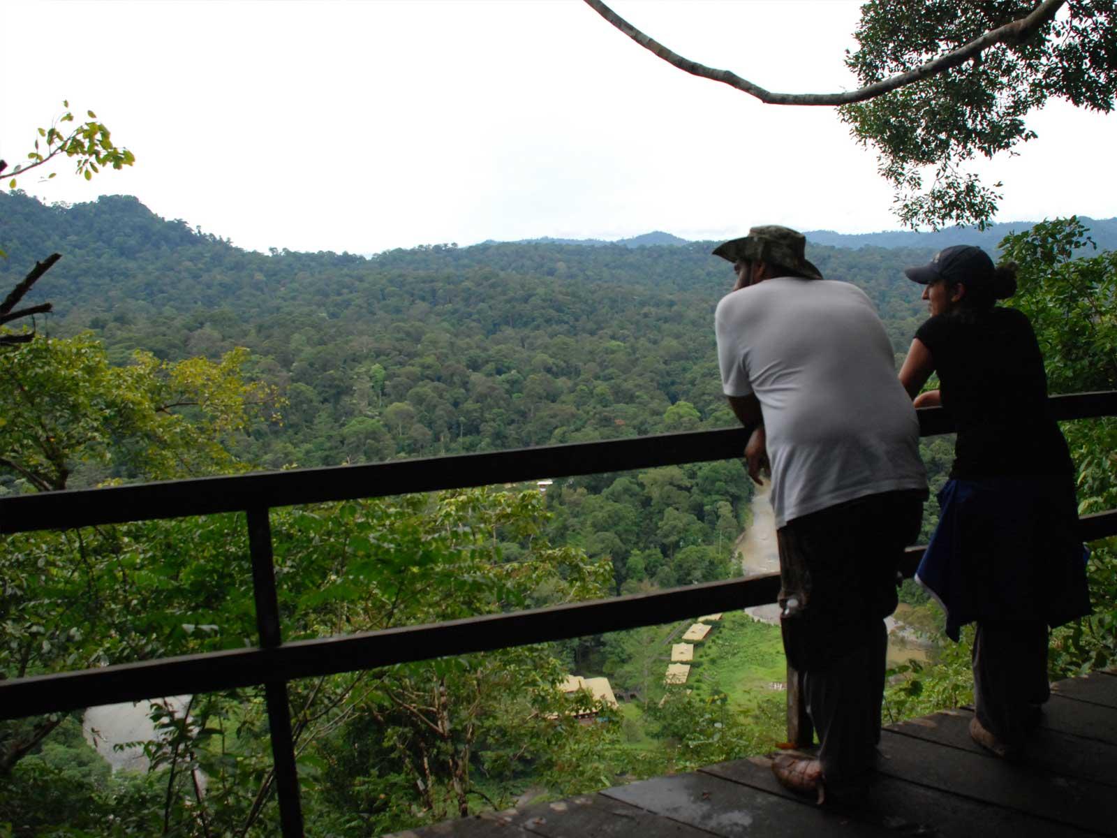 borneo rainforest lodge danum valley